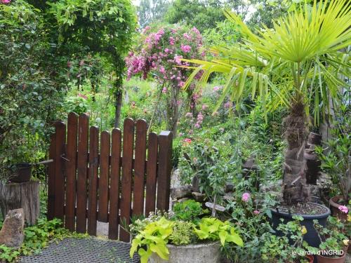 potager,chenille,pour le 18 juin,tour du jardin 092.JPG