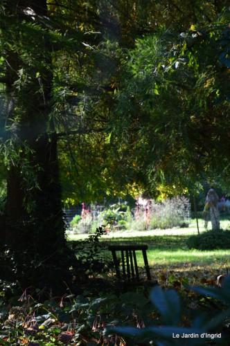 sauges,plectanthrus,Romane,canal,manthe r.,automne 168.JPG