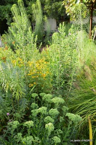confiture,bouquet,petit jardin 064.JPG