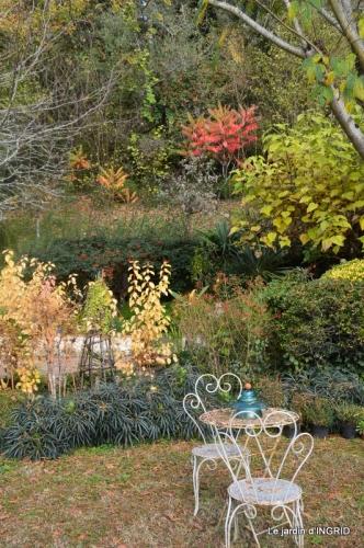 feuillages d'automne et tonte de la pelouse 068.JPG