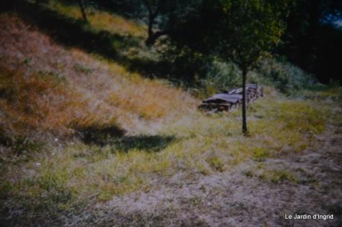 jardin,le cypres chauve,puces Mouleydier,vieilles photos 134.JPG