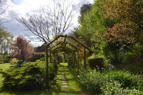mésanges,escargots,ros. de banks,abeilles,Monpazier,Banes,Forêt 075.JPG