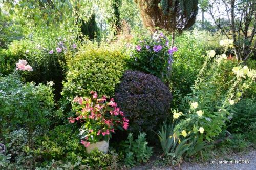 dahlias,jardin,puces st Avit Seigneur,Paniers Issigeac,Romane 039.JPG