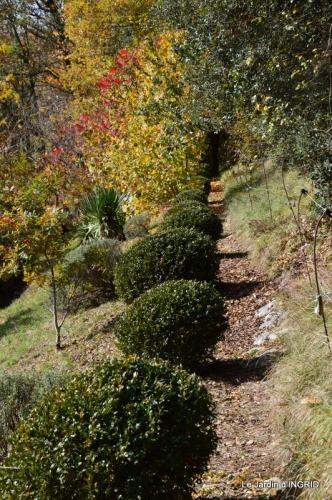 les arbres en automne,cabane 094.JPG