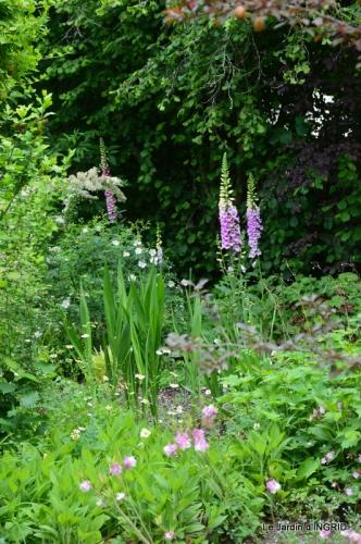 maison,jardin Bernadette,et jardin Claudine 128.JPG