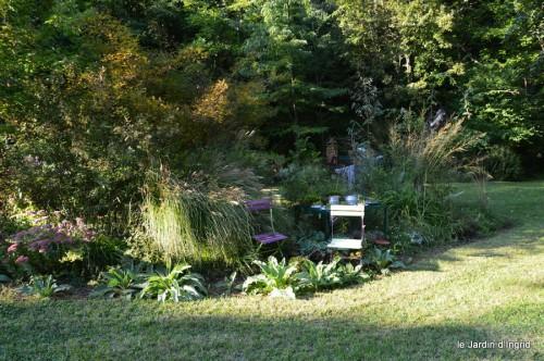 jardin,asters,fleurs blanches,chatte,rosiers roses 069.JPG