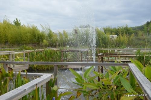 orage,puces,bouquet,Anniv.Ines,Brantome,Jardins d'eau 294.JPG