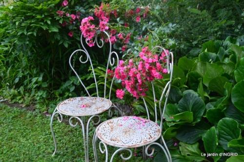 hémérocalles,Doprdogne,canal,bouquet fruit,jardin 033.JPG