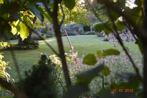 citrouilles,jardin,Combarel 031.JPG