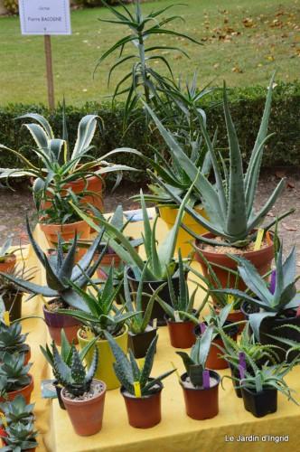 jardin,St Avit Seigneur brocante,Neuvic fête des plantes 077.JPG