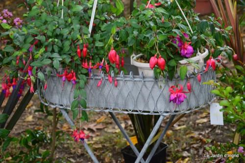 jardin,St Avit Seigneur brocante,Neuvic fête des plantes 094.JPG