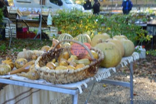 Issigeac,citrouilles ,rhus,automne,jardin 022.JPG