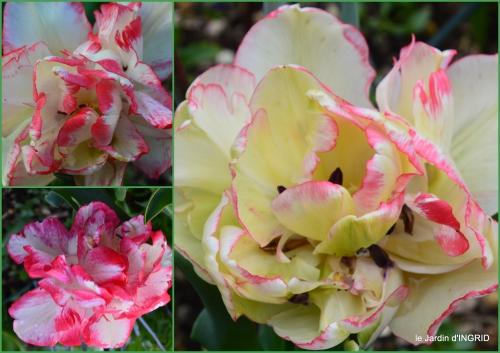 2016-04-16 jardin printemps.jpg