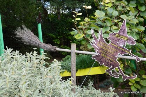 pigeons,Conives,Belves filature,jardin Limeuil 181.JPG
