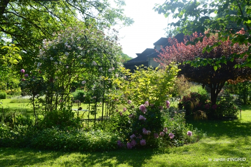 les roses,les 4 filles,jardin,Julie,coquelicots,cygnes 027.JPG