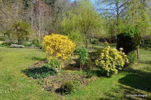 araignée,vues jardin,cygnes,insecte 053.JPG