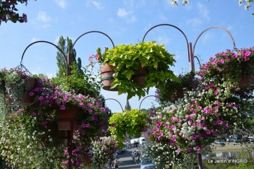 jardin,les filles,gerbera,Lalinde 133.JPG