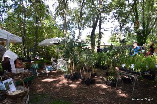 mariage,jardin,la Brande,figues 094.JPG