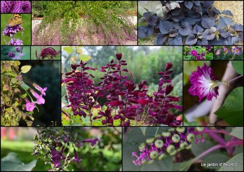2015-09-20 insectes,fleurs,land art,Couze,chateau de Banes,Lalinde,Monsac12.jpg