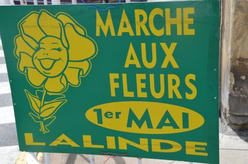 chateau  Banes,marché fleurs Lalinde 051.JPG