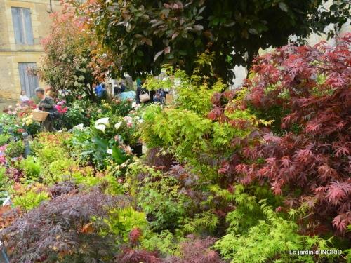 Colombier,Cadouin,jardin,roses,pluie 041.JPG