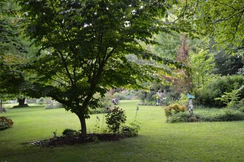 tour du jardin en juin 118.JPG