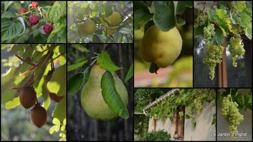 2013-08-29 jardin,fruits,Caro,papillons,manthe religieuse,Lalinde1.jpg