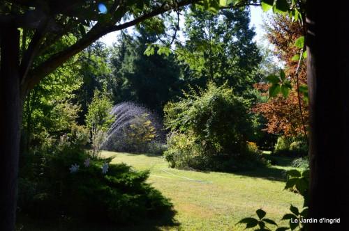 Fabien et Mélo,les filles,tomates,jardin ombre 141.JPG