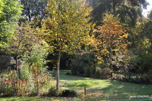 Jardin à l'automne 056.JPG