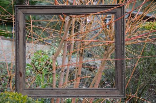 chez Maryse,pour tableaux,jardin 2013 048.JPG