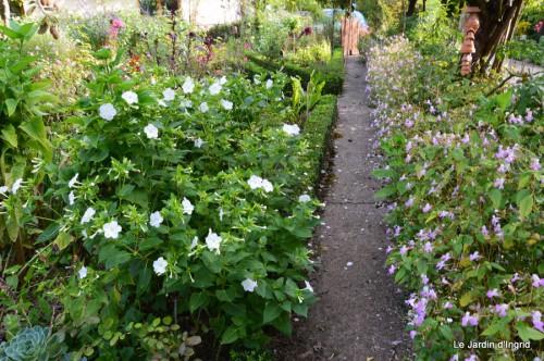 jardin,fleurs blanches 052.JPG