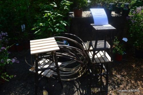 Fouleix,cygnes,Inès,jardin 080.JPG