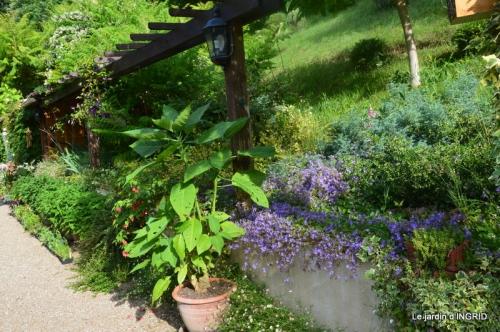 portes ouvertes,taille marguerittes,jardin 005.JPG