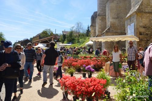 gastéropodes,les cygnes,marché,l'Abbaye Nouvelle,jerdin 107.JPG