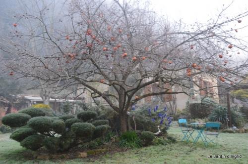 jardin givré,oiseaux 025.JPG