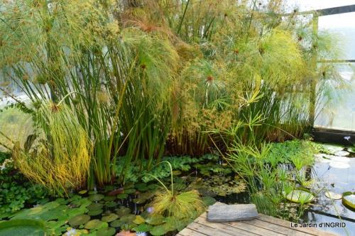 les jardins d'eau de Carsac 149.JPG