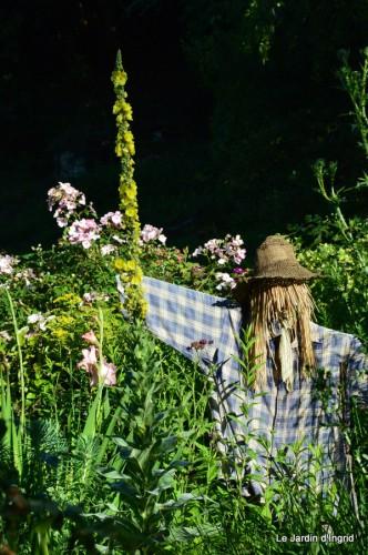 jardin,marché,vieilles photos,bignonia,gouttes,Ste Avit Seigneur 031.JPG