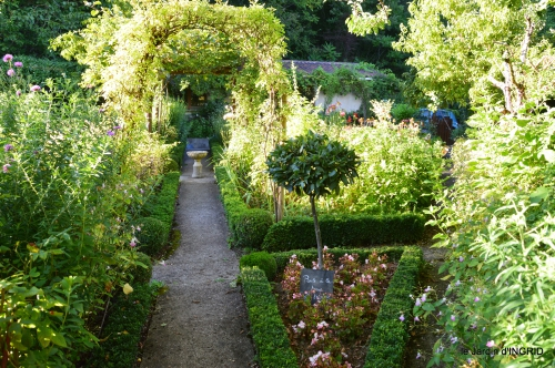jardin,arrosage,pourpre,bouquet 048.JPG