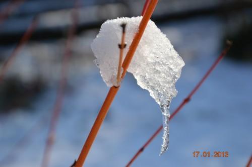 neige sous le soleil 041.JPG