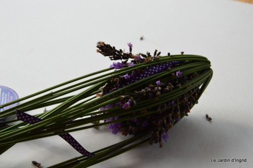 tournesols,pt jardin,nénuphard,libellules,lavande bouquet,carava 103.JPG