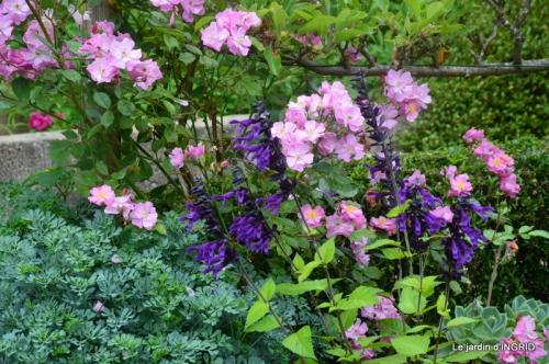 Trémolat,petit jardin,Julie 109.JPG