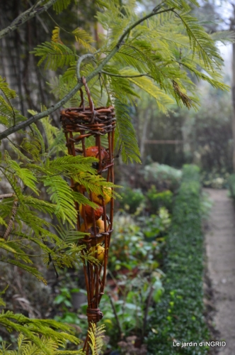 Brouillard,cypres chauve,jardinage 007.JPG