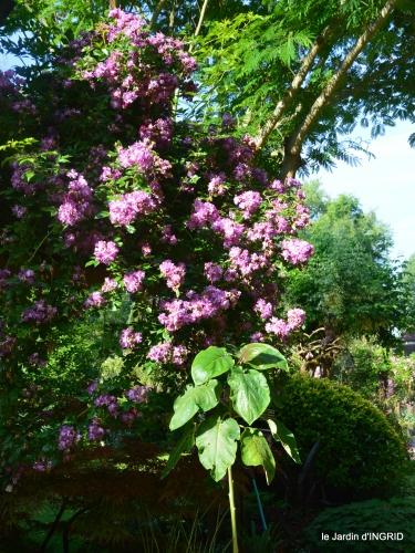 tour jardin de mai ,les épouvantails,préparation 098.JPG