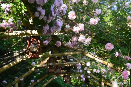 les roses,les 4 filles,jardin,Julie,coquelicots,cygnes 005.JPG