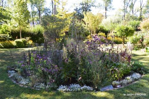 jardin,arrosage,pourpre,bouquet 056.JPG