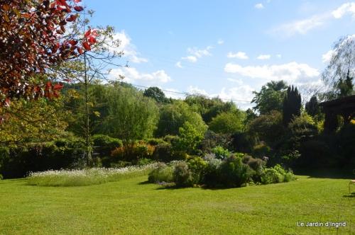 jardin avril et mai, 123.JPG