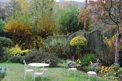travaux,érable rouge,abeilles,Monpazier,jardin 010.JPG