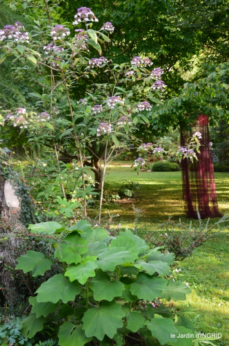 jardin,papillons,anniversaire d'Ines,bricolage 028.JPG
