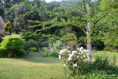 en juin jardin 180.JPG