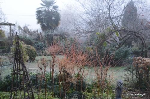 jardin givré,oiseaux 009.JPG